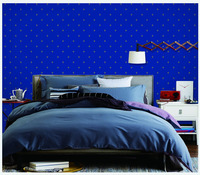 strippable coated non-woven wallpaper modern star design for home decoration