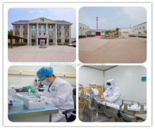 china veterinary factory supplier10% Enrofloxacin Oral Solution