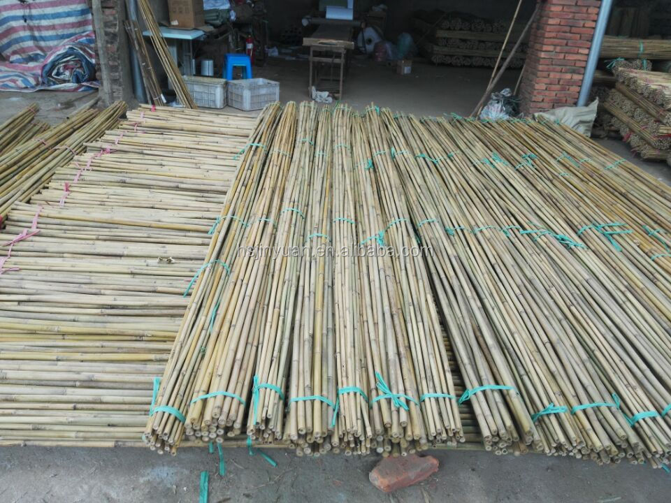 Cheap Agriculture PVC Coated bamboo pole and Color Bamboo Cane