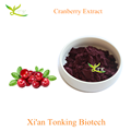 High Quality Cranberry Extract Proanthocyanins 5%-25%