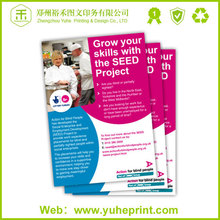2015 cheap promotional China factory OEM printing for sample school brochures