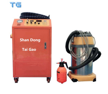 High quality high pressure LGP stainless steel dry wet steam car wash machine and steam cleaner