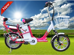 350W 48V 12AH Bicycle Electric with Pedal Simply Series Easy to Recharger With Alloy Frame TDR142BZ