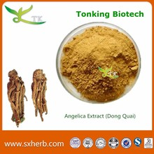 Pure Angelica root extract angelica natural herbal seed