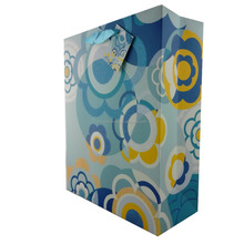 Handle paper gift bag /with good quality and good factory price