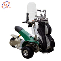 2018 New 36V 1000W 20AH Electric Golf Cart
