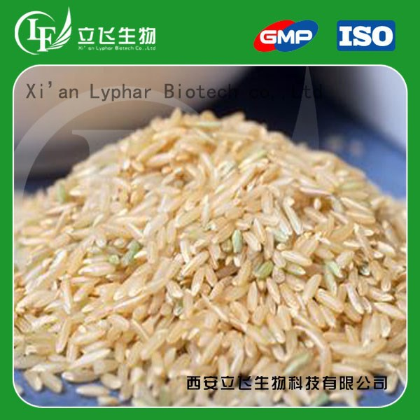 Lyphar Supply Rice Protein Bulk