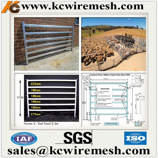 Factory!!!!!!! Kangchen heavy duty hot dipped galvanized livestock cattle yard panels