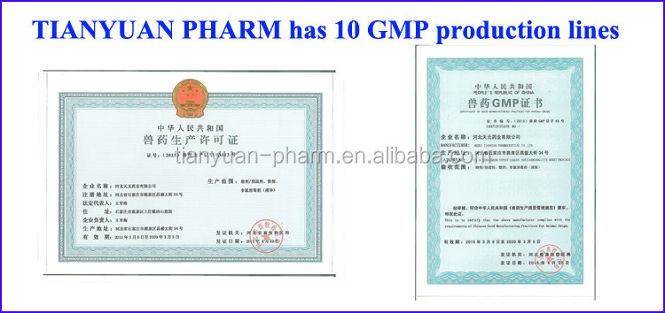 gmp certified companies parasite drugs albendazole 400mg tablet albendazole oral suspension for dogs