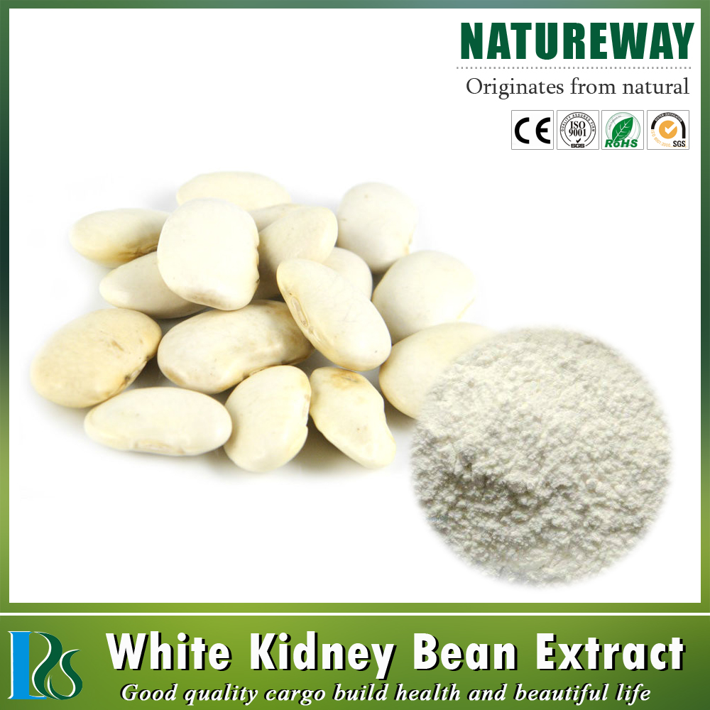Natural plant White kidney Bean P.E. extract powder CAS:13401-40-6