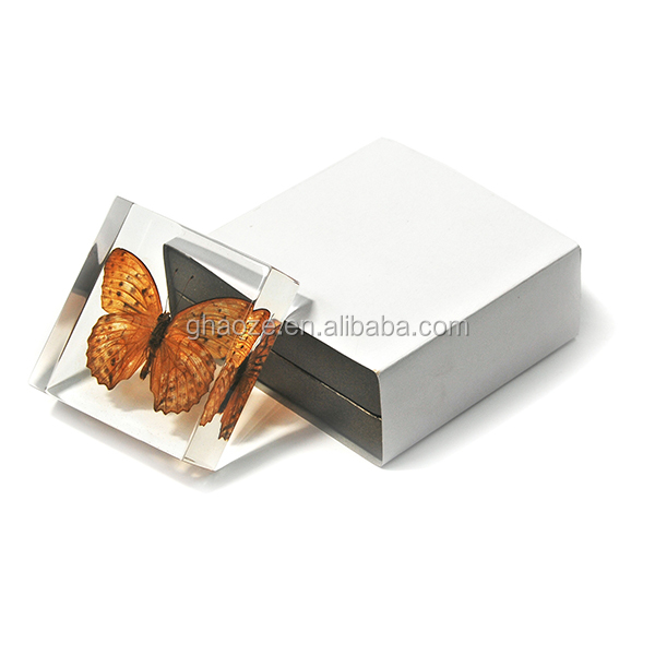 Butterfly Resin Crafts Square Acrylic Butterfly Paperweight Factory