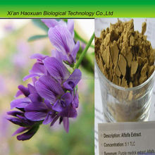 China Best red clover flower extract 8%,40% Isoflavones