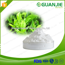 Natural Green Tea Extract Powder,l-Theanine Powder,l Theanine Powder