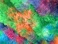 tie die 40 mm flocking plush peacock fabric