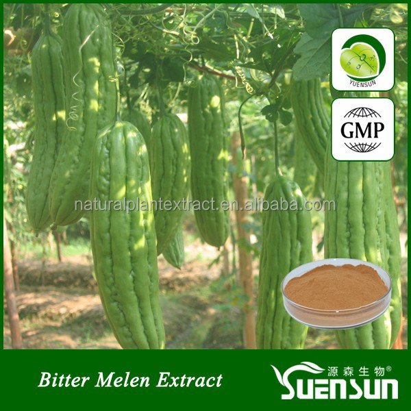 bitter melon extract 10% charantin GMP factory bitter melon powder