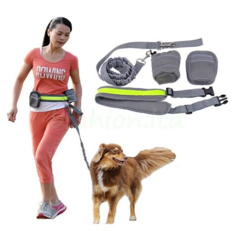 TAILUP Hands Free Dog Training Leash Walker Lead Set For Walking Hiking Running