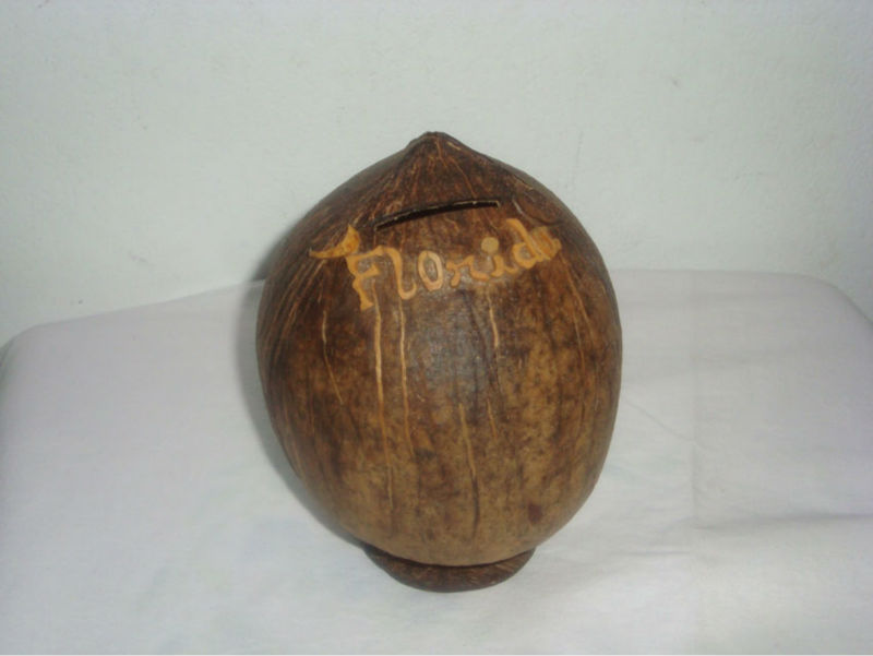 Hand made Unique decorative Coconut shell kids Souvenir Coin savings bank for home use, gift and promotional use
