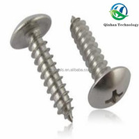 Umbrella Head Self Tapping Screw Furniture