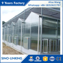 SINOLINK long life solar hydroponic strawberry Polycarbonate greenhouse
