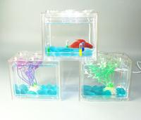 Small clear acrylic aquarium/fish tank