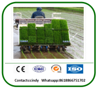 hot sale agriculatural machine rice planter machine for sale