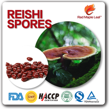 Anoxidant Red Reishi Lingzhi Extract 1000mg Soft gels Capsules