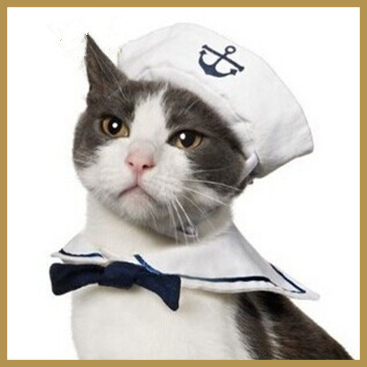 New Fashion pet clothing and cap set small dog cat kitten puppy pet sailor outfit costume puppy cap