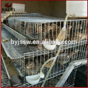 Factory Price Metal Quail Breeding Cage For Sale Philippines