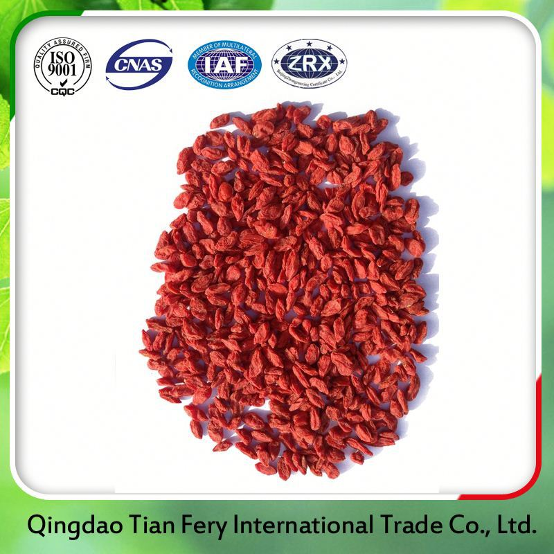 Organic Dried Goji Berries Market Price