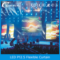 New Outdoor IP65 video curtain flexible soft led curtain
