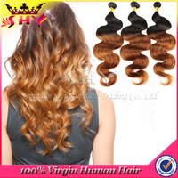 7A cheap 100% human hair ombre virgin brazilian hair extension on sale