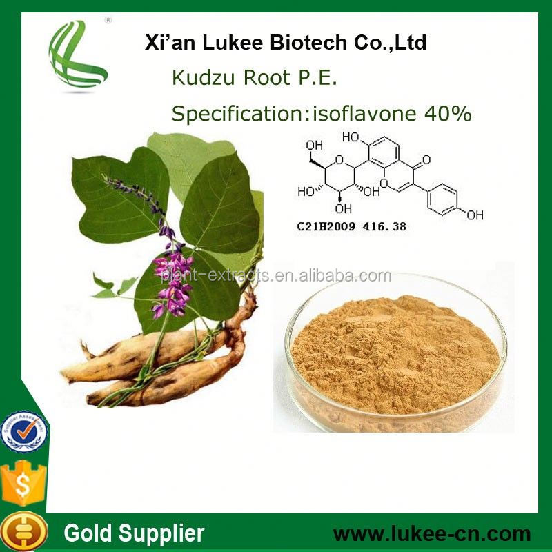 100% Natural anti-aging Chinese herbal extract pueraria mirifica extract 98% kudzu root powder