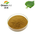 Factory Price 100% Natural Mulberry Leaf Extract