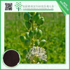 Alibaba China supplier black cohosh herb extract 5%
