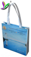 BOPP laminated custom logo printing wholesale eco-friendly carry away non woven reusable shopping bag