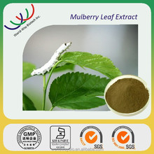 Free samples DNJ ,HACCP KOSHER GMP Certified mulberry leaf extract 1-DNJ , Bulk in stock DNJ powder