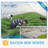 Fair Trade Ruixin Non Woven Polypropylene Greenhouse Cover