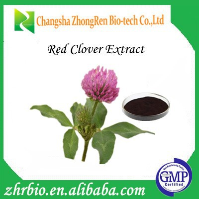 100% Natural Trifolium pratense L extract / Red Clover Extract /Trifolium Extract Isoflavones 30%