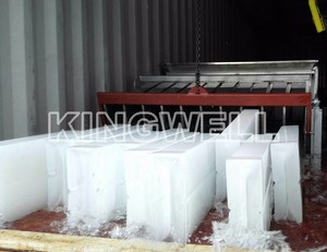 12TONS No-Installation Containerized Ice Block Making Machine Price