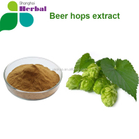 High quality Beer Hops Extract/Hops Flower Extract Powder/ 5%,90% xanthohumol