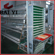 Poultry Farming System Automatic Egg Collection For Sale Cheap