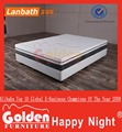 Golden Furniture Memory Foam Mattress Memory Foam 105-3