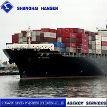 Shanghai Agency of Customs Declaration for import &export agent