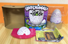 Hatchimals In Stock Hatching Egg Self-Hatch Toy Hatchimals Penguins growing egg