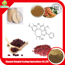 GMP certificated Natural High Quality Schisandra Berries P.E. BULK Chinese Magnolia Vine