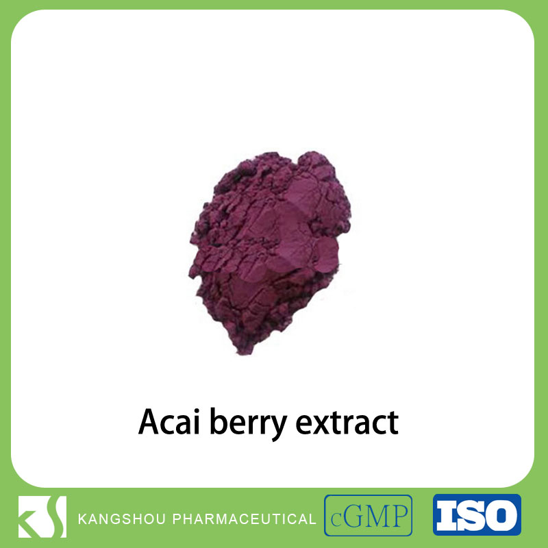 Best Healer Natural Acai Berry/ Brazilian Acai Extract Powder 20:1