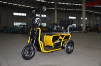 Handicapped mini electric scooter for adults/handicapped tricycle motorcycle