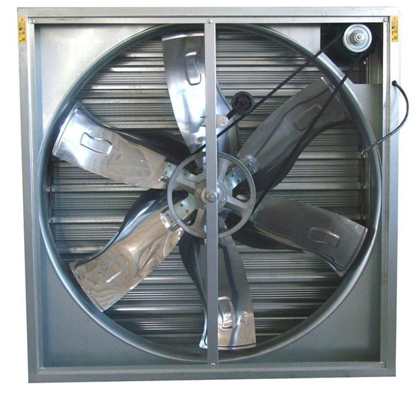 Hot radial centrifugal ventilation fans for sale low price
