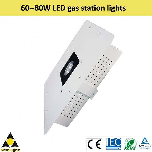 DC12-24V imput voltage High power cob led chip MeanWell driver used gas station pump for sale