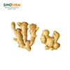 /product-detail/china-fresh-organic-ginger-wholesale-supplier-62007847414.html